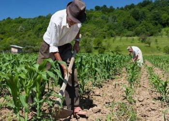Aposentadoria Rural na Proposta da Nova Previdência